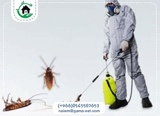 شركة رش حشرات بالظهران
